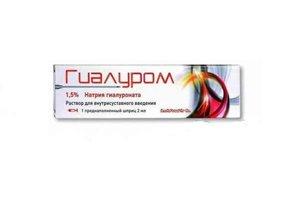 Гиалуром р-р в/сустав 1.5 2мл (шприц)
